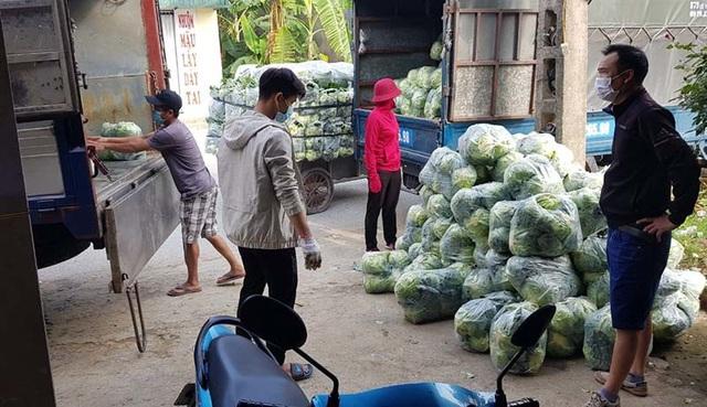 """nongsan 15 1614186940702 Nông sản Hải Dương: Vì sao Hải Phòng """"cấm cửa"""", Hà Nội rộng đường chào đón?"""